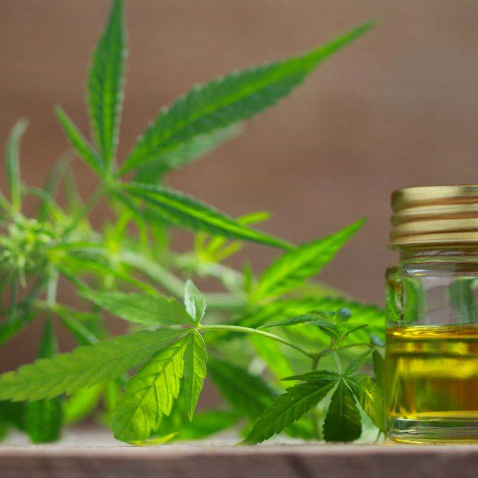 Foto van cannabisblad en oliepotje