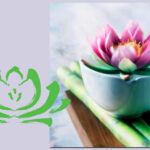 Pad van de Lotus